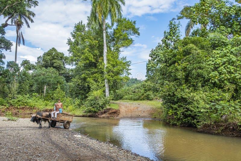 Agricoltori del parco nazionale Humboldt fotografia stock libera da diritti