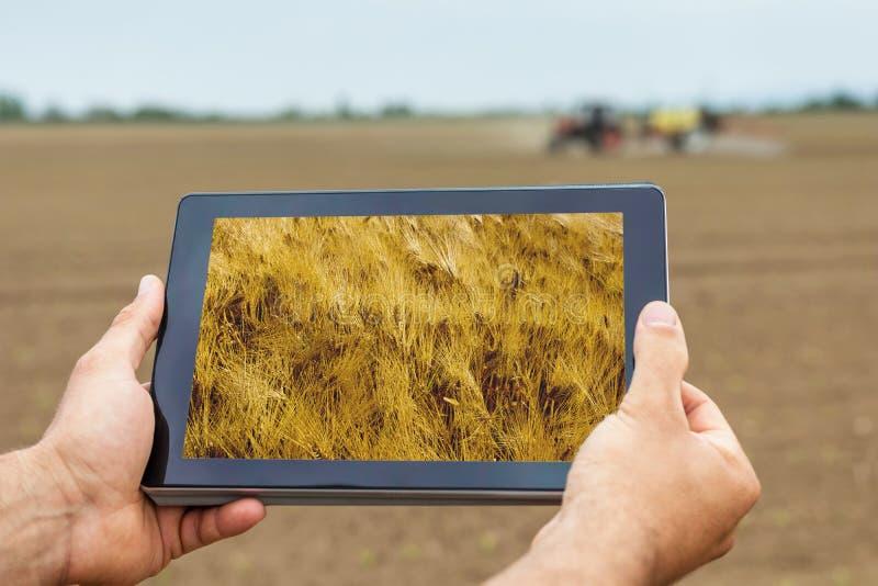 Agricoltura astuta Agricoltore che usando piantatura del grano della compressa AG moderno immagine stock libera da diritti