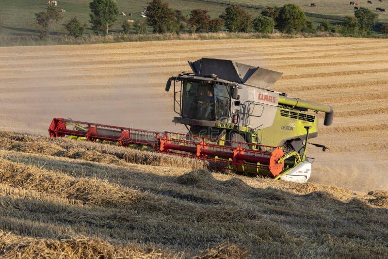 Agricoltura del tempo del raccolto - coltivando fotografie stock libere da diritti