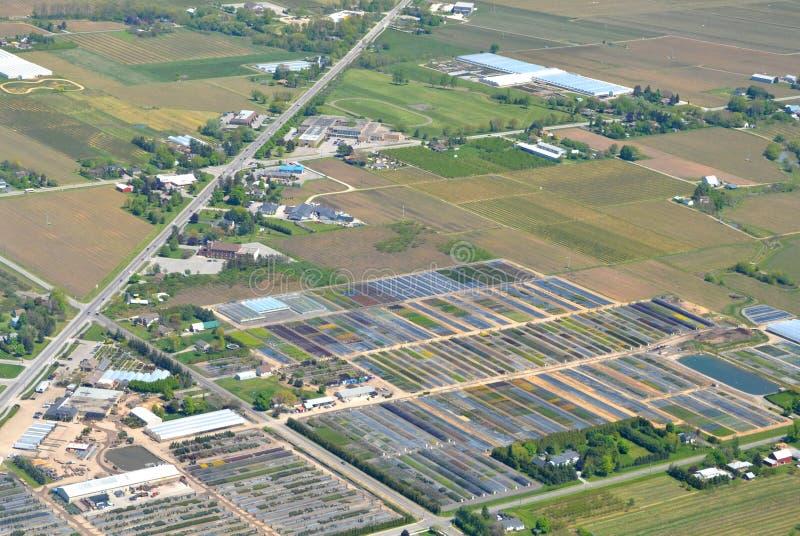 Agricoltura di regione di Niagara immagine stock