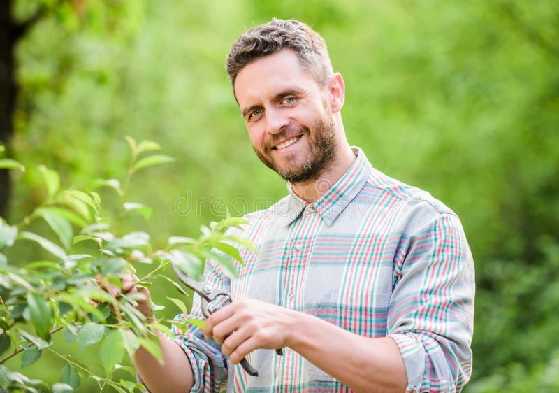 agricoltura e coltivazione di agricoltura Strumenti di giardino piante muscolari di cura dell'uomo del ranch Manodopera agricola  immagini stock