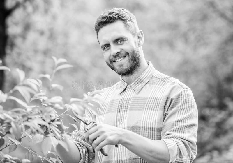 agricoltura e coltivazione di agricoltura Strumenti di giardino piante muscolari di cura dell'uomo del ranch Manodopera agricola  fotografia stock