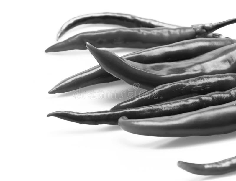 Agricoltura e concetto dell'alimento fresco Peperoni piccanti messicani di forma lunga Chili Peppers fotografia stock
