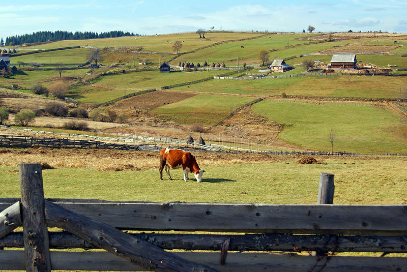 Agricoltura sulla parte superiore della montagna fotografia stock libera da diritti