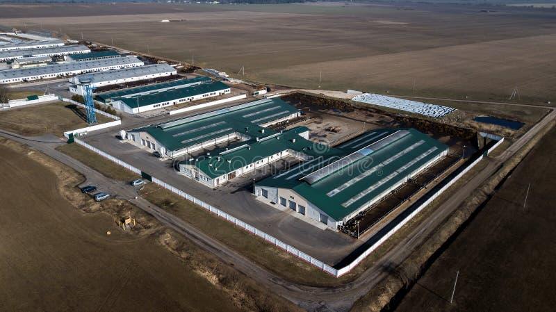 agricoltura Vista superiore dell'azienda lattiera Rilevamento aereo fotografia stock