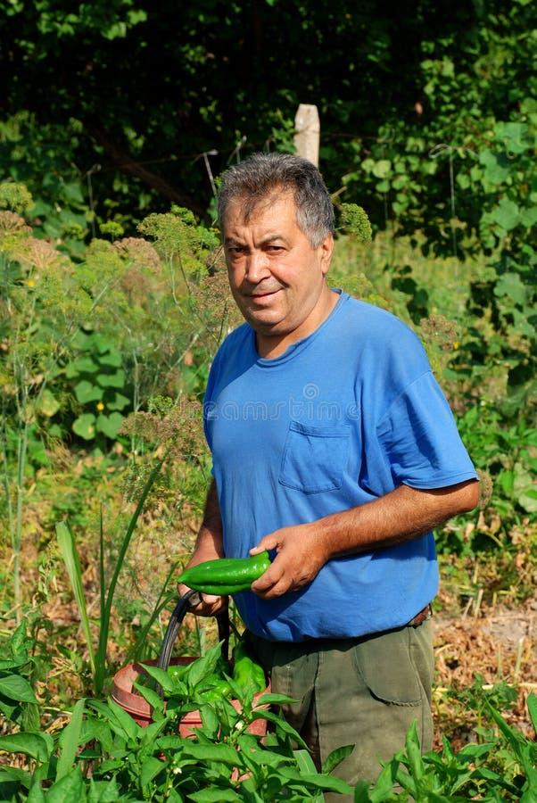 Agriculteur image libre de droits