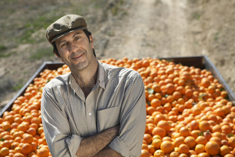 Agriculteur With Arms Crossed se tenant contre la remorque des oranges image stock