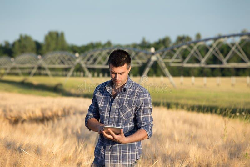 Agriculteur avec le comprimé dans le domaine photos stock