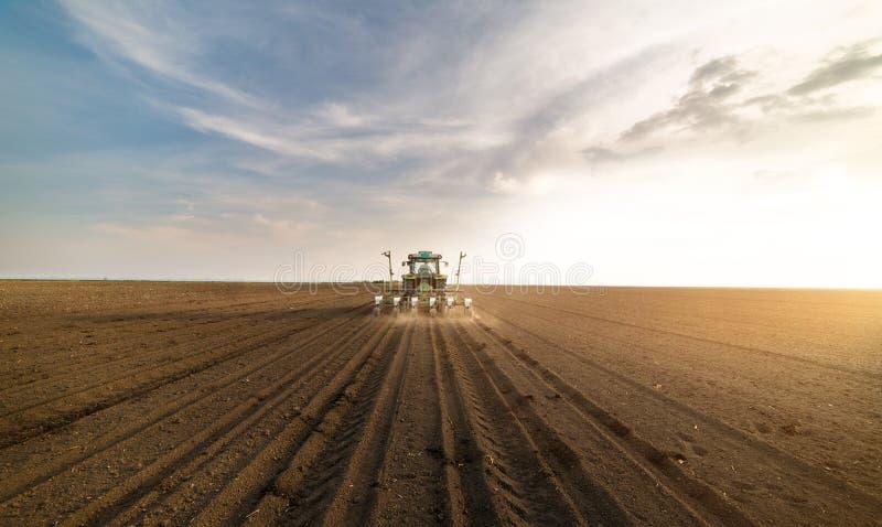 Agriculteur avec le tracteur semant des cultures de soja au champ agricole image libre de droits