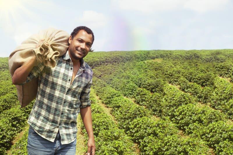 Agriculteur brésilien de café à la plantation de café photo stock