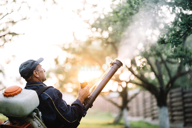 Agriculteur, bricoleur travaillant à l'aide de la machine de sac à dos pour pulvériser les pesticides organiques image libre de droits