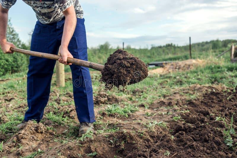 Agriculteur creusant la terre pour construire un lit profond de dans le potager photos libres de droits