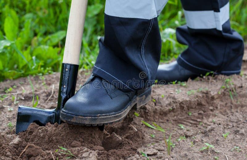 Agriculteur creusant un jardin photo stock