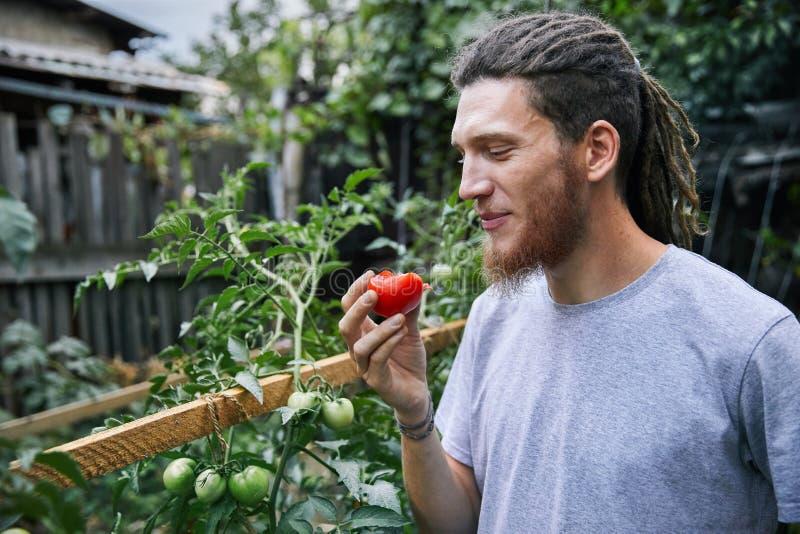 Agriculteur dans le jardin photos libres de droits