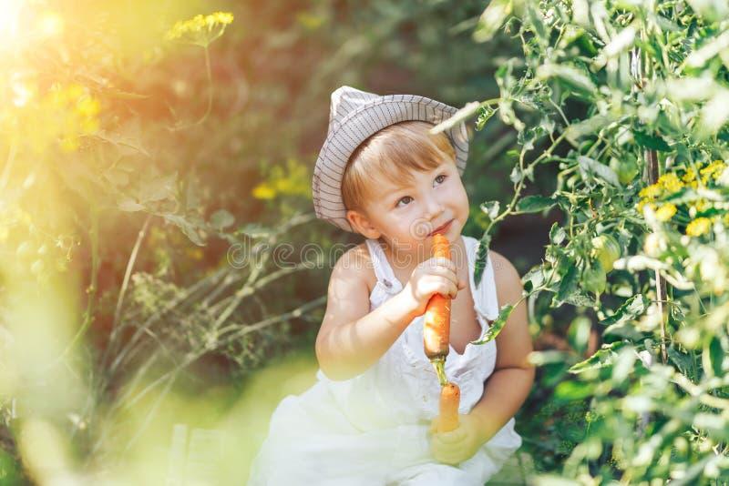 Agriculteur de bébé avec les carottes et le clother cacual se reposant dans l'herbe verte photos stock