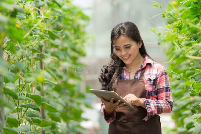 Agriculteur féminin avec le comprimé photographie stock