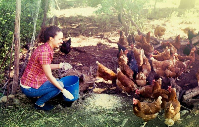 Agriculteur féminin avec le seau sur la ferme avicole photo libre de droits