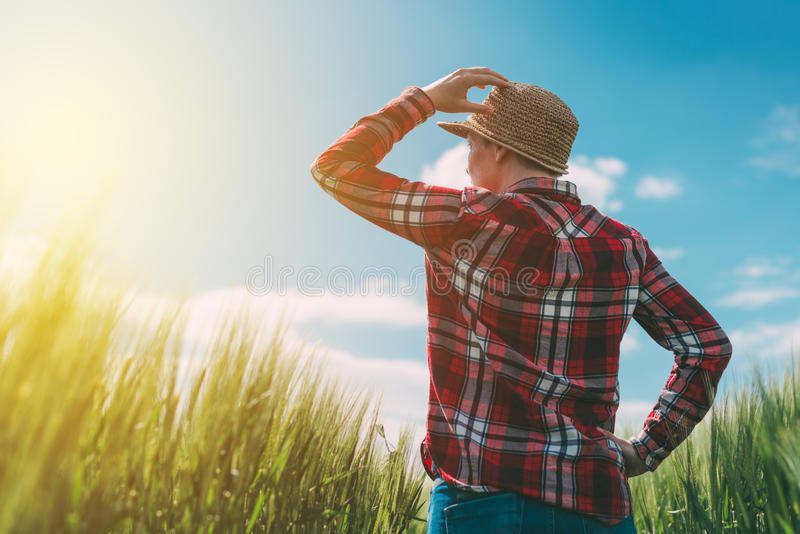 Agriculteur féminin regardant le soleil sur l'horizon photos stock