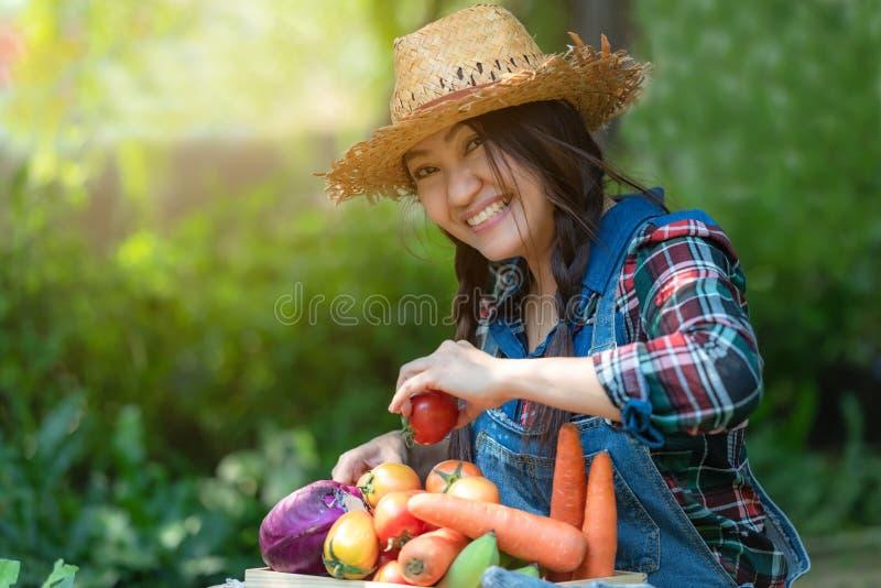 Agriculteur heureux asiatique de femmes jugeant un panier des légumes organique dans le vignoble dehors images stock