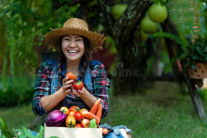 Agriculteur heureux asiatique de femmes jugeant un panier des l?gumes organique dans le vignoble dehors photo libre de droits