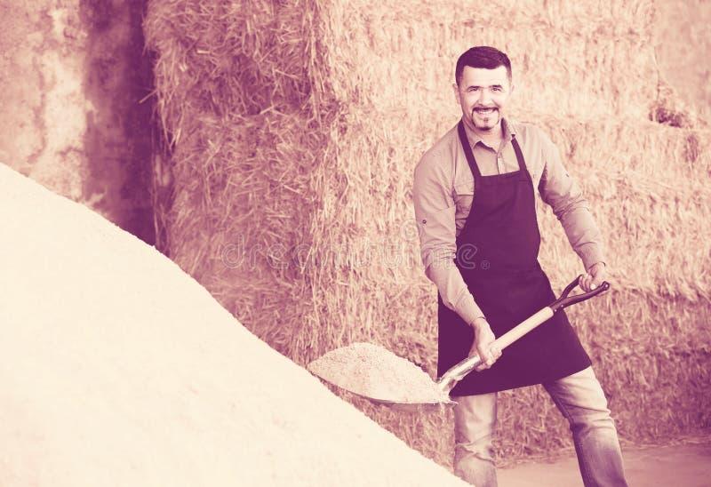 Agriculteur mûr avec la grande pelle dans la grange images libres de droits