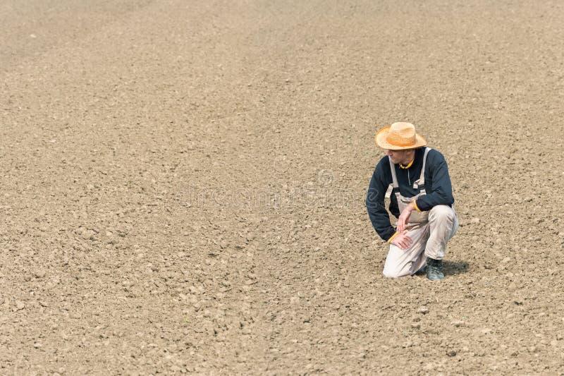 Agriculteur observant le champ labouré images libres de droits