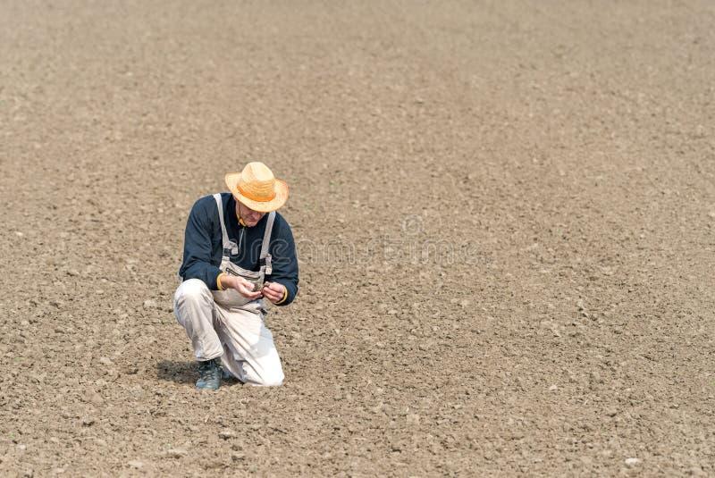 Agriculteur observant le champ labouré image libre de droits