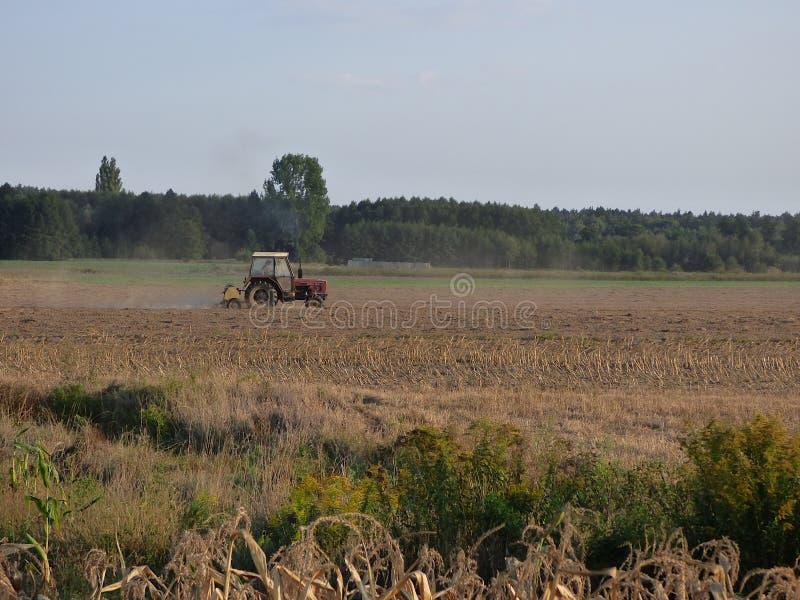 Agriculteur polonais dans un tracteur fonctionnant dans le domaine image stock