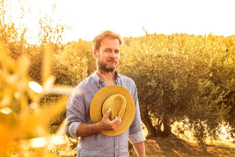 Agriculteur se tenant devant un verger olive - agriculture images stock