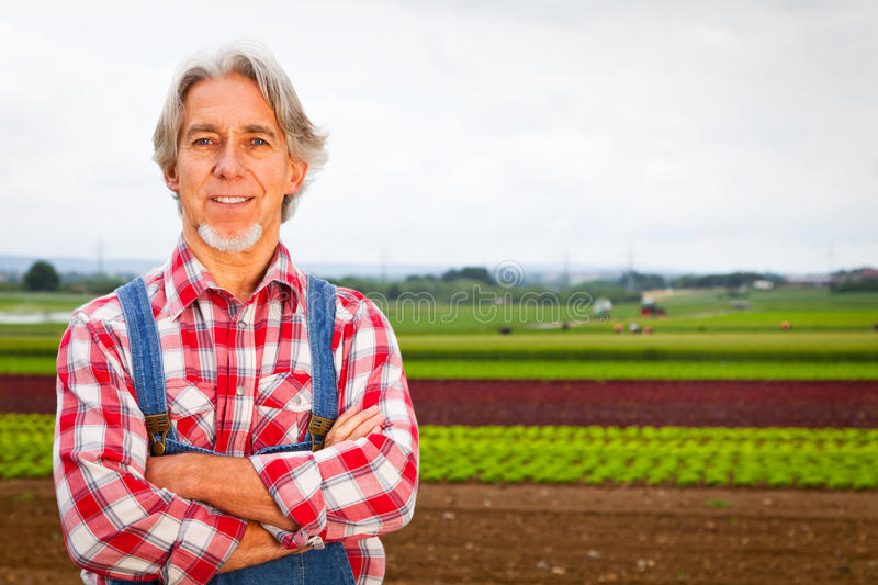 Agriculteur Standing In Front Of His Field photo stock