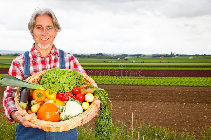 Agriculteur Standing In Front Of His Field images stock