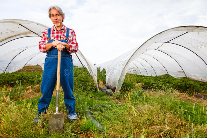 Agriculteur Standing In Front Of His Greenhouse photos stock