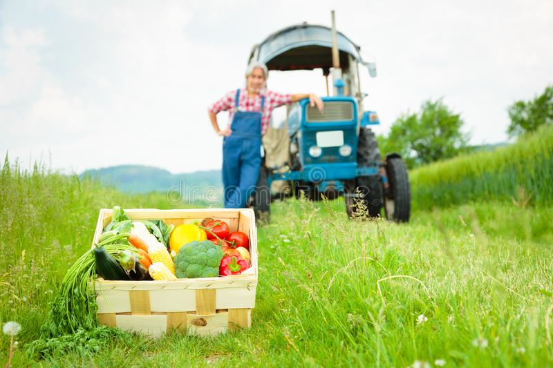 Agriculteur Standing In un champ image stock
