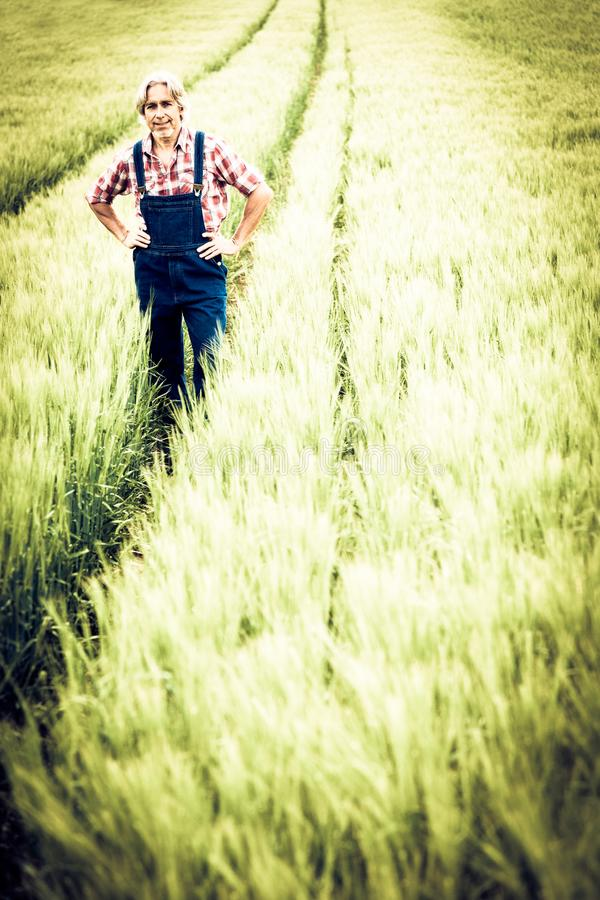 Agriculteur Standing In un champ photographie stock