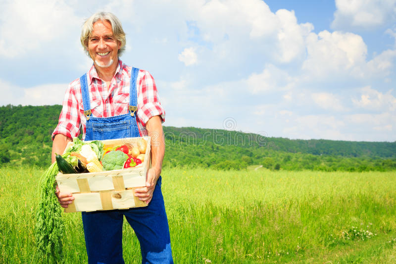Agriculteur Standing In un champ images stock