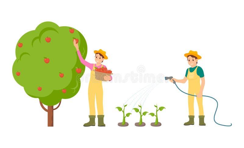 Agriculteur Woman avec l'illustration de vecteur de panier illustration de vecteur