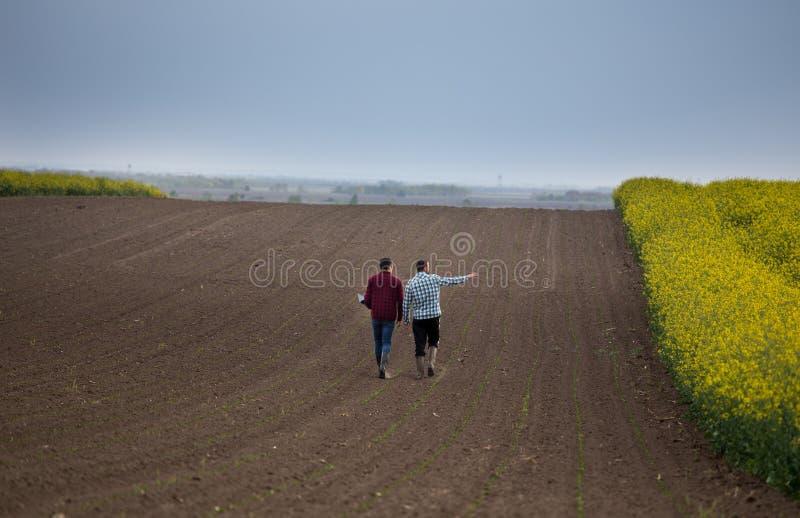 Agriculteurs avec l'ordinateur portable dans le domaine images stock