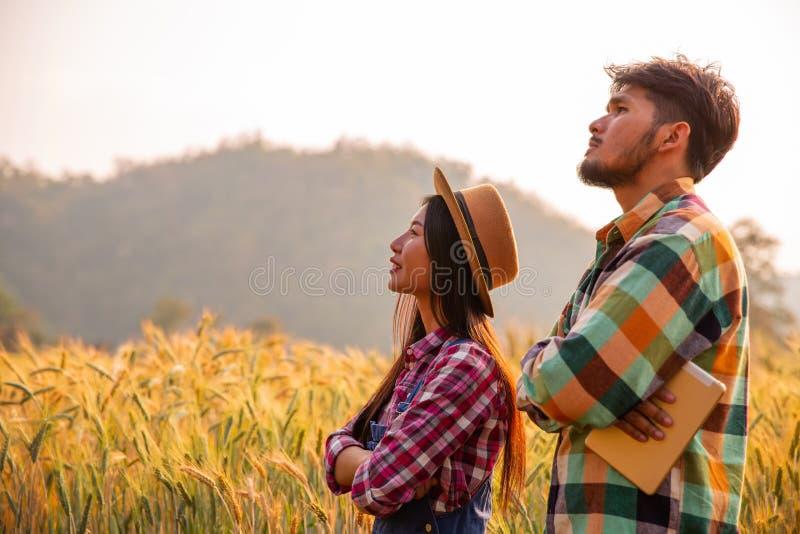Agriculteurs dans un domaine d'or avec un comprimé numérique photos libres de droits