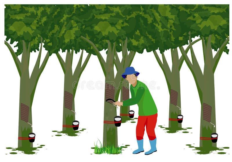 Agricultor com árvore da borracha ilustração do vetor