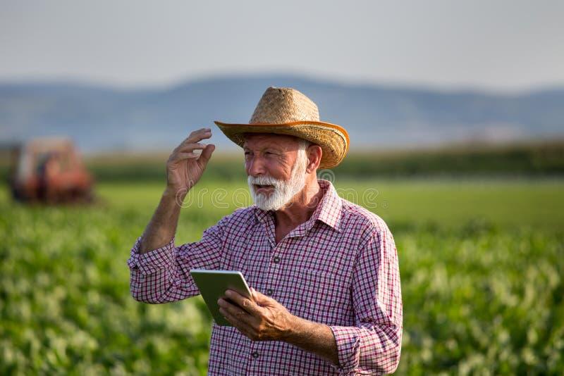 Agricultor com comprimido à frente do trator no campo fotografia de stock royalty free