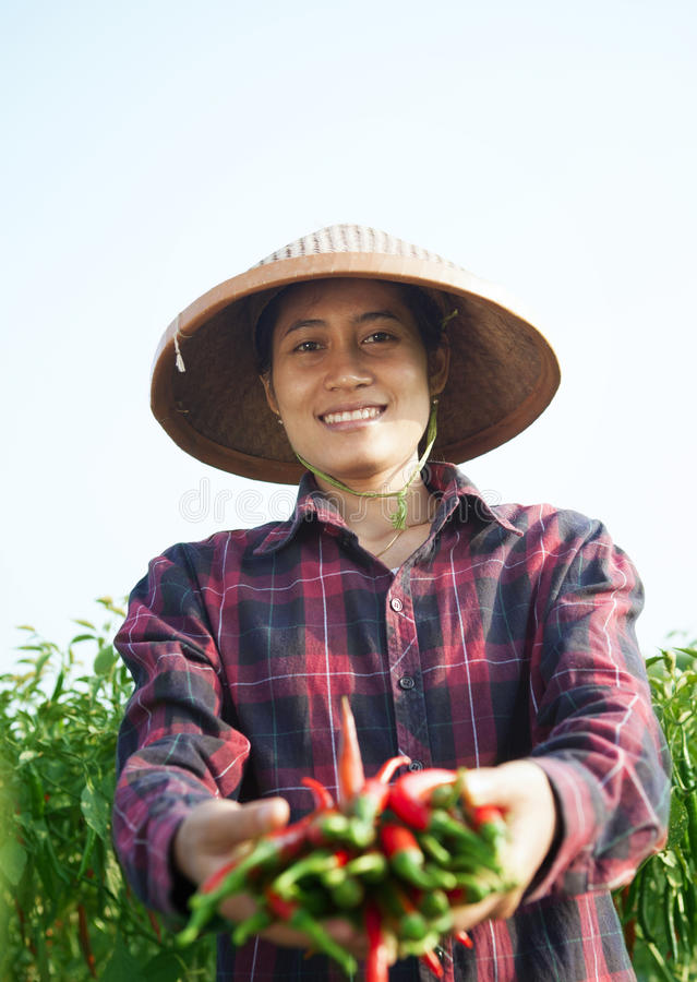 Agricultrice images libres de droits