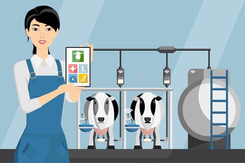 Agricultrice asiatique avec le comprimé à une exploitation laitière illustration stock