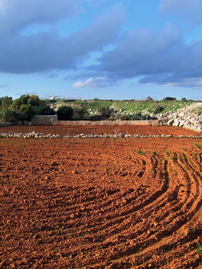 Agricultura fotos de archivo