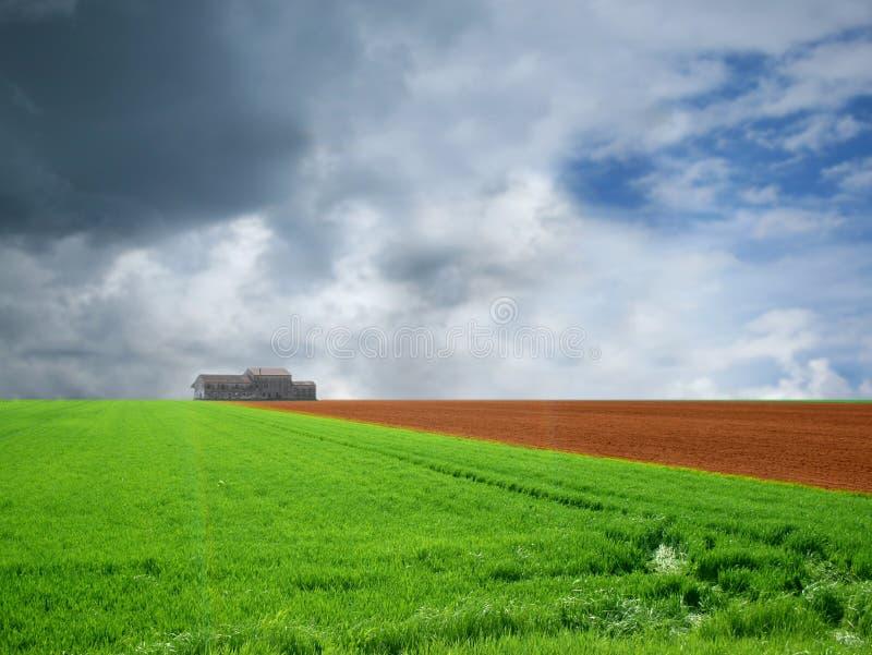 Agricultura ajardinada imagem de stock royalty free