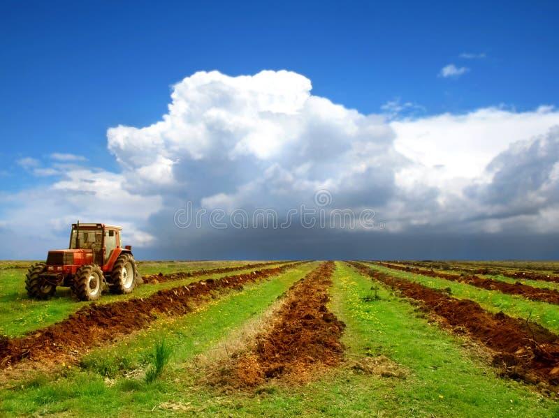 A agricultura ajardinou imagem de stock royalty free