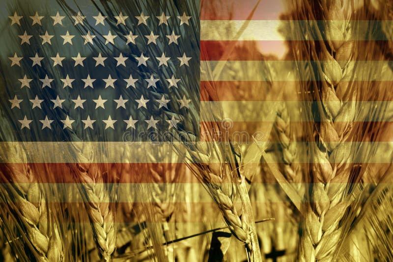 Agricultura americana ilustração stock