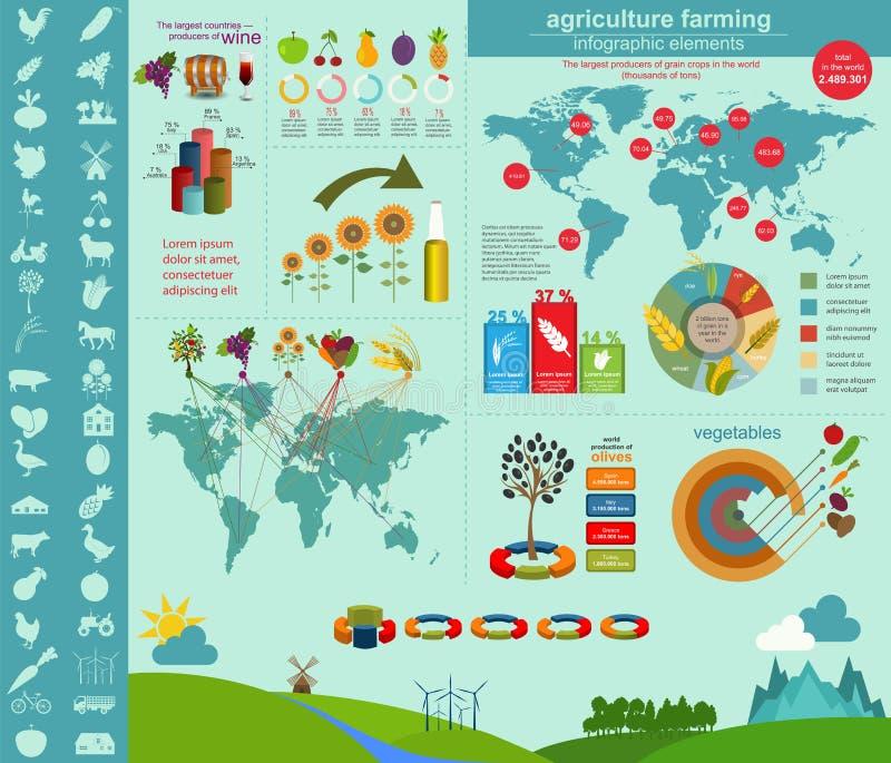 Agricultura, cultivando o infographics ilustração do vetor