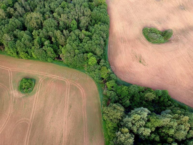 A agricultura cultivou campos e floresta na mola, aérea imagem de stock royalty free