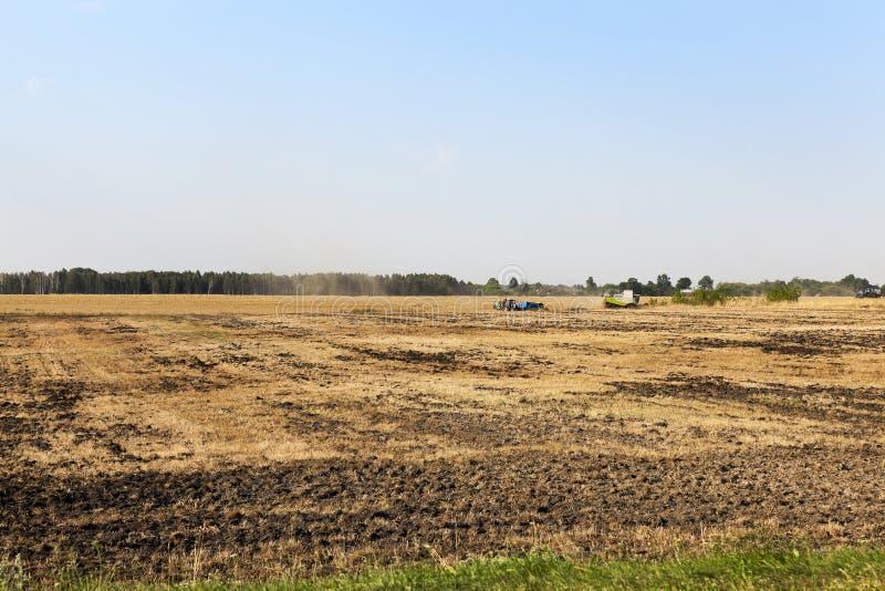 Agricultura de la foto, Europa imagen de archivo