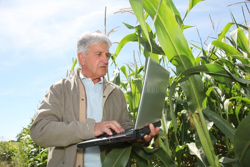 Agricultura e ciência fotografia de stock royalty free